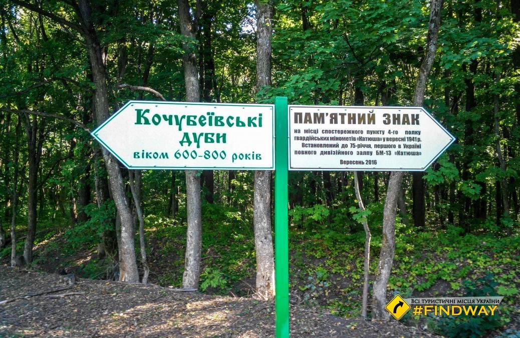 """Парк """"Кочубеївські дуби"""", Диканька"""