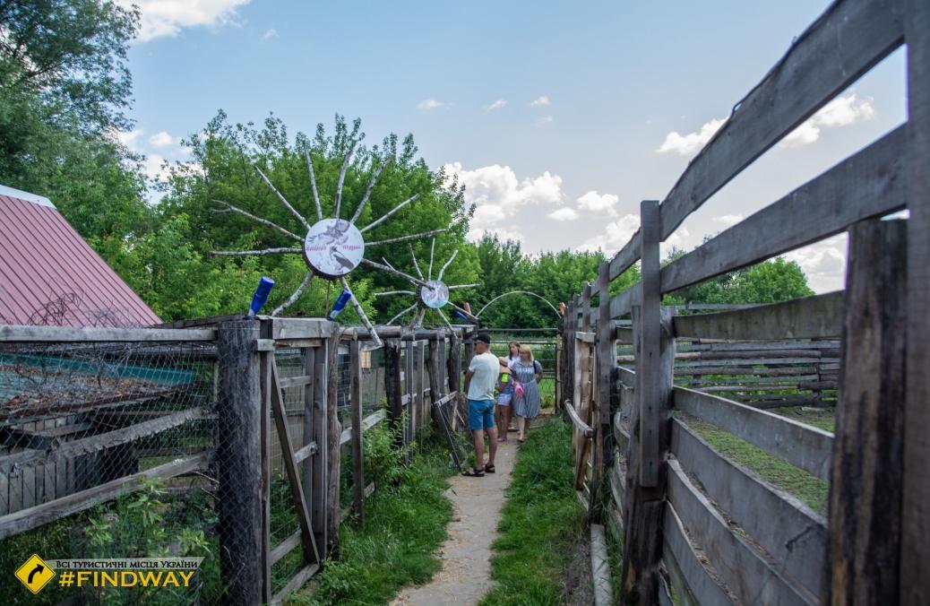 Страусиная ферма, Верхняя Сыворотка