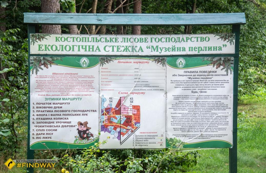 Forest Museum, Kostopil