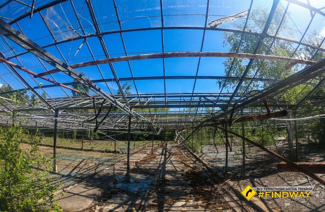 Экспериментальное парниковое хозяйство, Припять
