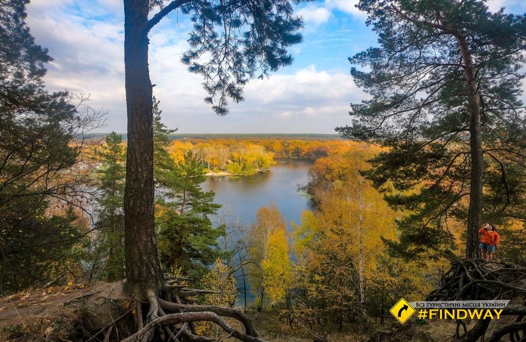 Cossack mountain, Korobov hutora (Gomolshanski forest, Koropovo)