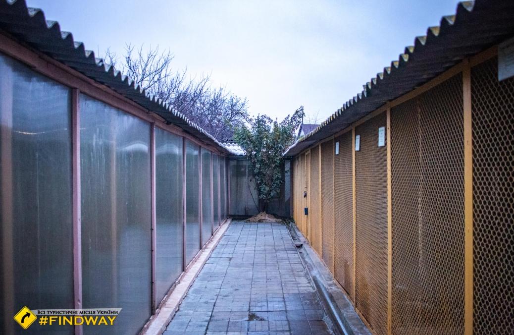 Станция юных натуралистов (мини-зоопарк), Балаклея