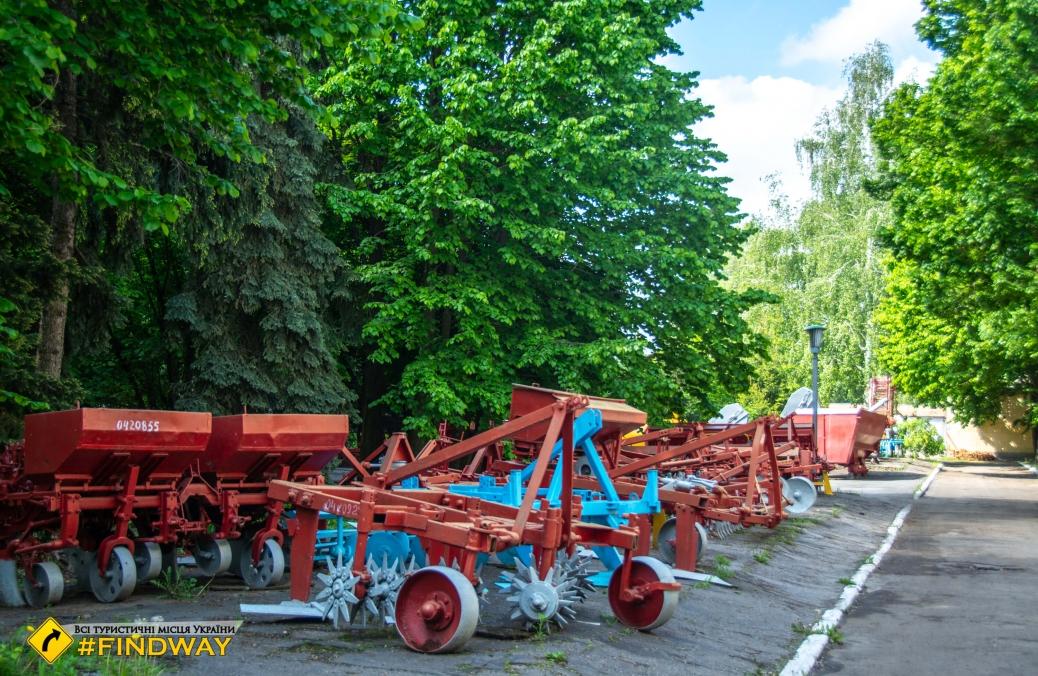 А это - памятник Свиньи, Полтава