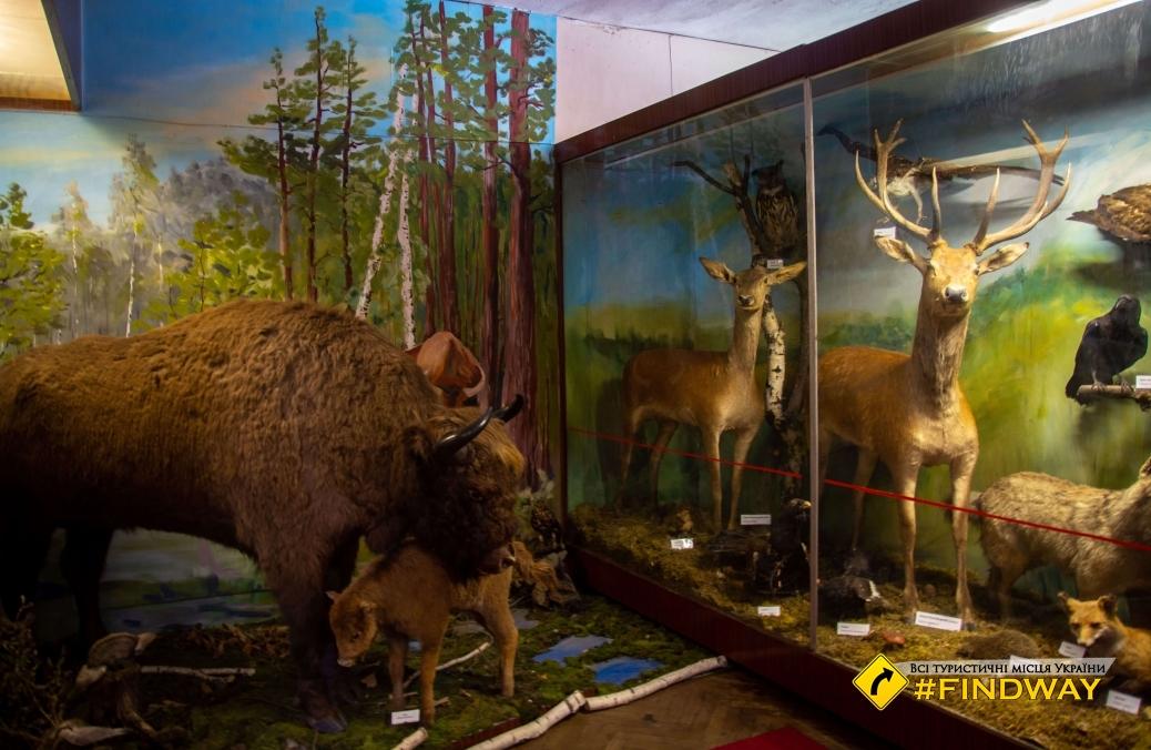 Кременецкий краеведческий музей