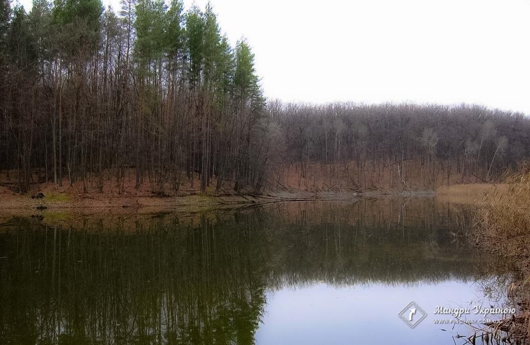 """Национальный природный парк """"Гомольшанские леса"""""""