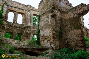 Faltz-Fein abandoned manor, Novoolexandrivka