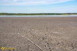 Salt lake, Novotroitske