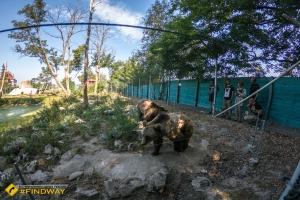 Медвежий приют «Белая скала», Березовка