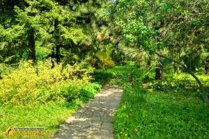 Ботанический сад университета Каразина, Харьков