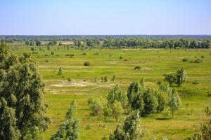 Shcherbaty Tsuhli, Prybirsk