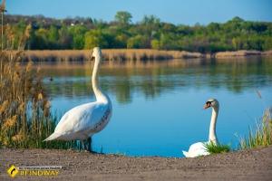 Соленые озера, Славянск