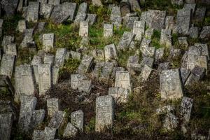 Старое еврейское кладбище, Кременец