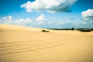 Кицевская пустыня «Бугристые пески»
