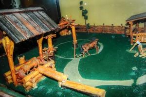 Музей воды, Кочеток