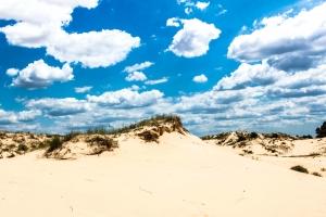 Олешківські піски, Українська пустеля