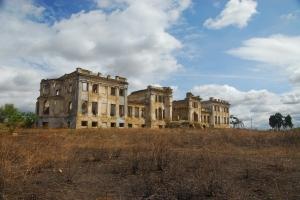 Manor of human-wolf (Dubetskiy-Pankeiveh palace), s.Vasilevka