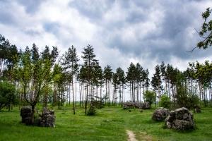 "Ruins of Headquarters ""Werewolf"" (A. Hitler bunker), Vinnitsya"
