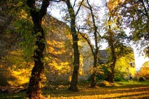 Теребовлянский замок, Теребовля
