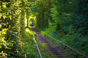 Tunnel of Love (Klevan, Rivne)