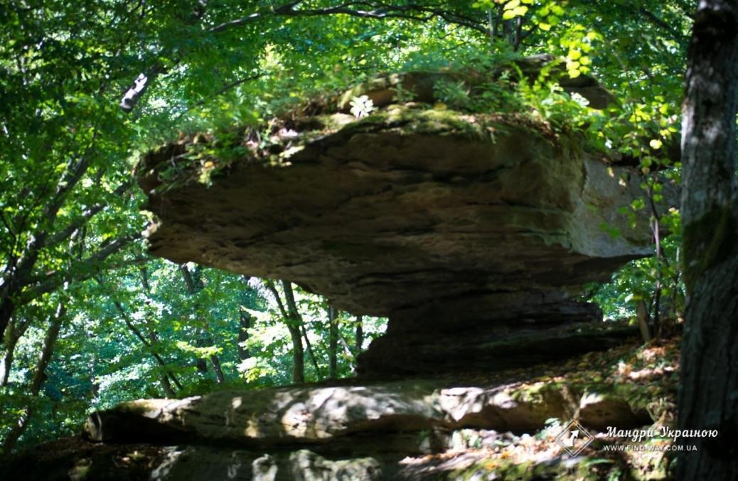 """Natural park """"Haidamak ravine(yar)"""", Busha"""