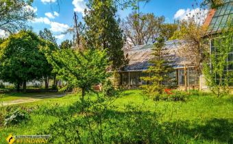 Botanical Garden of Karazin University, Kharkiv